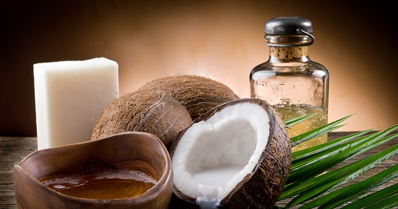 Coconut Oil Popularity Trend